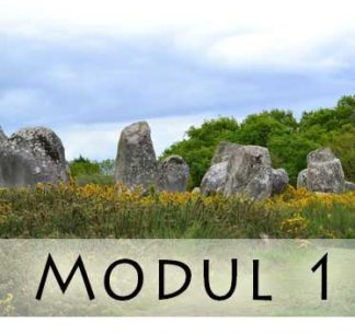 Modul 1 / Module 1