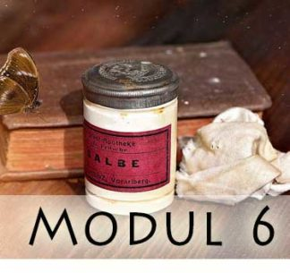Modul 6 / Module 6